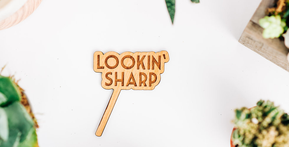 Lookin' Sharp Plant Stake