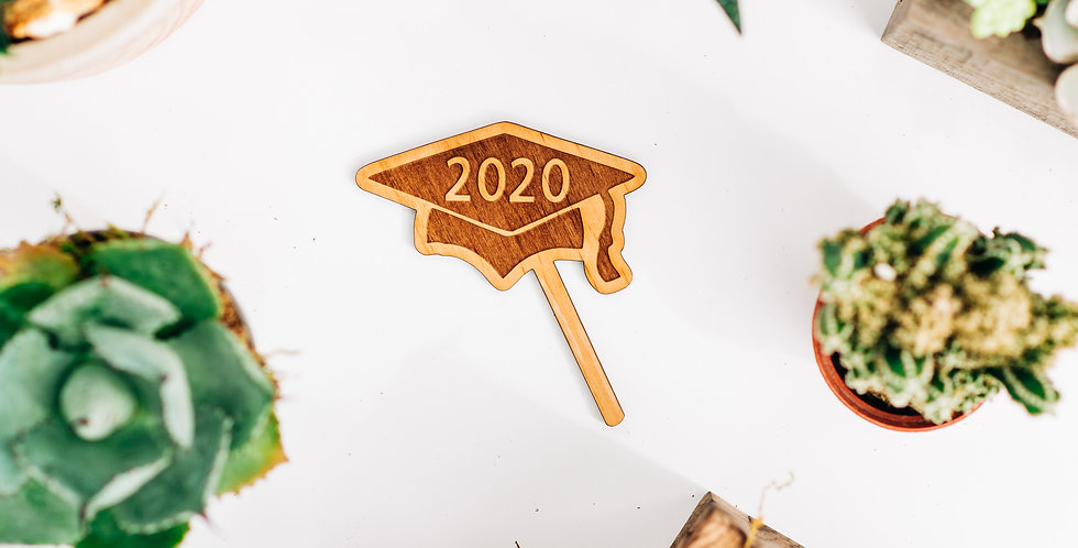 2020 Grad Cap Plant Stake