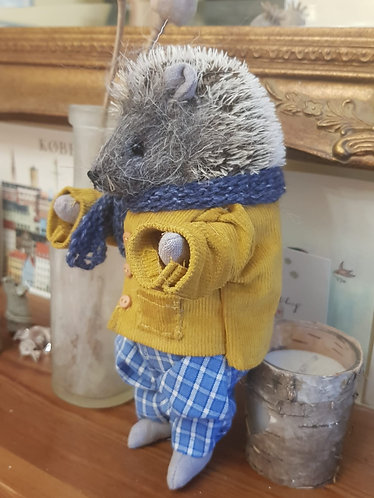 Eric the Hedgehog