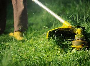 jardinage, bricolage, tondre l'herbe, tondre le gazon