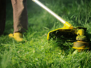 Lawn Care Tips For Midwest Climate