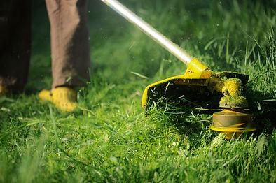 Paysagiste Services à la personne Vendée Les herbiers Saint Fulgent Les Epesses Sèvremont Débroussaillage