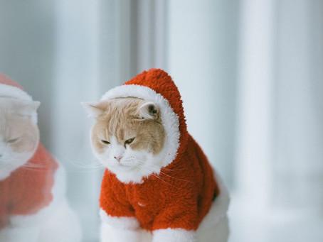 Πώς να υποστηρίξετε κάποιον με πρόβλημα ψυχικής υγείας αυτά τα Χριστούγεννα