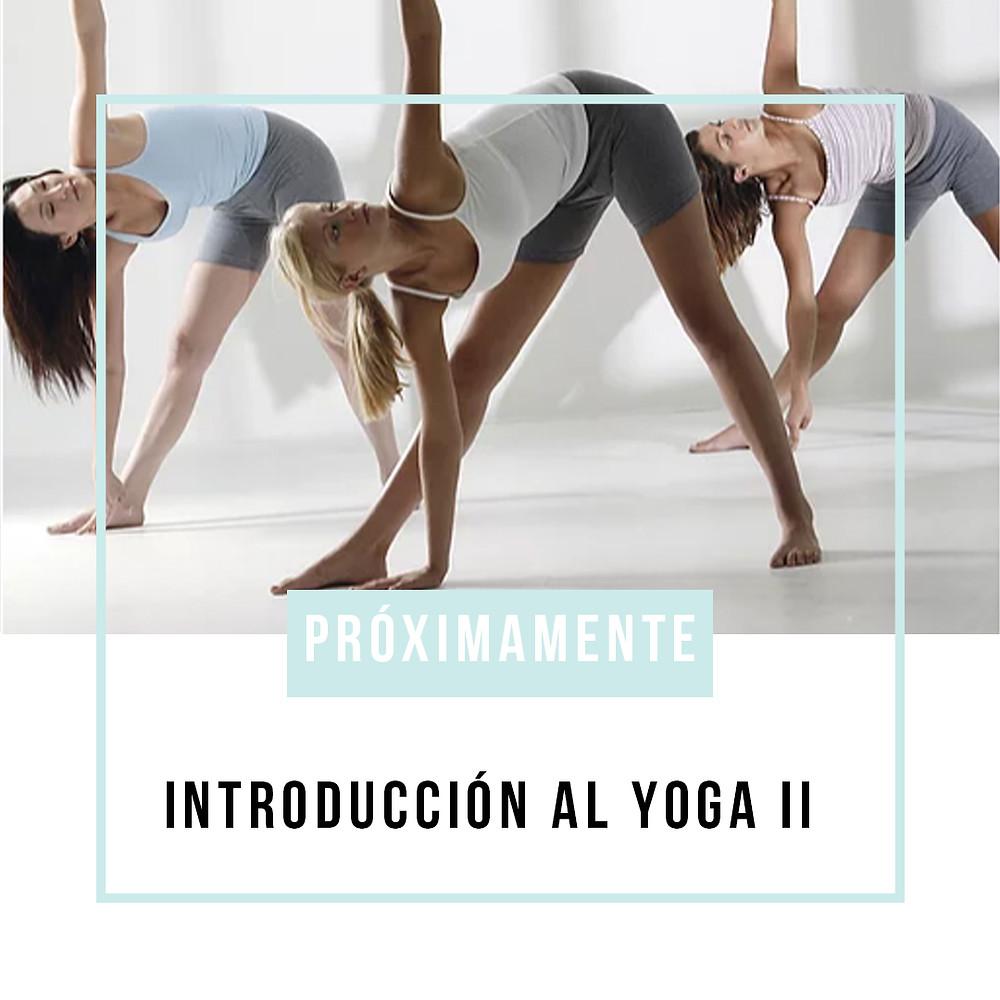 Imagen de tres chicas practicando yoga