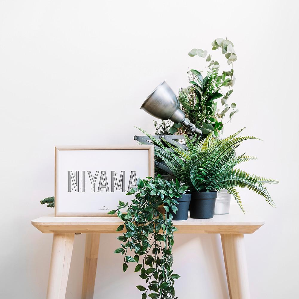 Imagen de un cuadro con la palabra asteya de yiyi live it slow una hoja de una palmeta y un cesto.