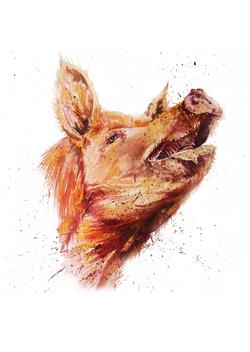 pig ink