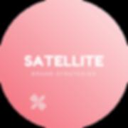 SATELLITE circle.png