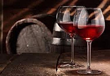 Wine Tasting and Vineyard Tour