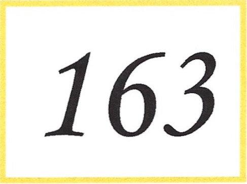 Number 163