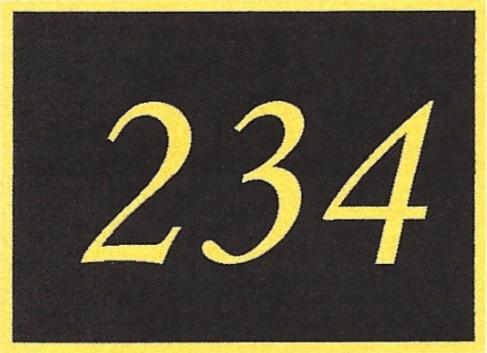 Number 234