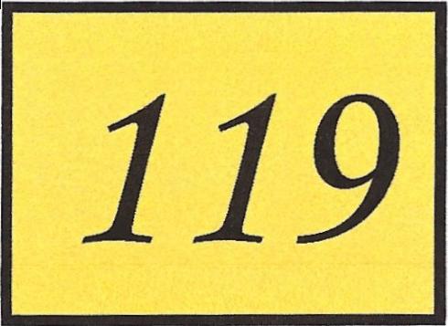 Number 119