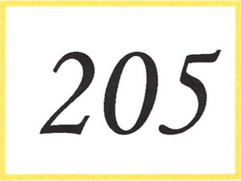 Number 205