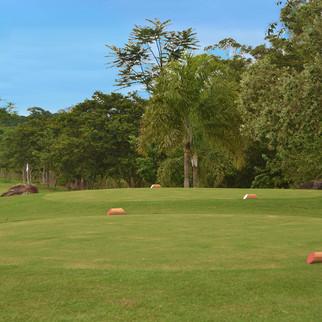 jardins_do golfe_5.jpg