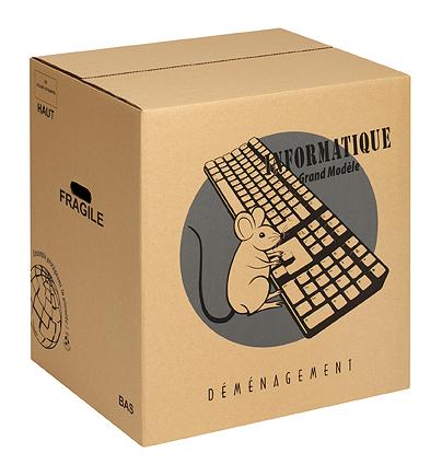 Carton informatique