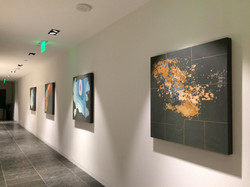 Topographical Series Installed