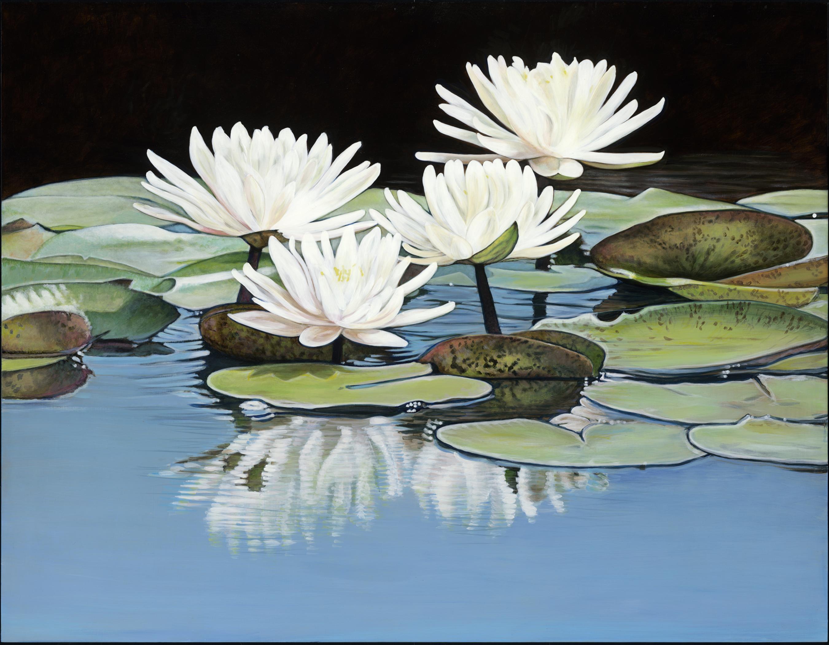 Domke's Lilies