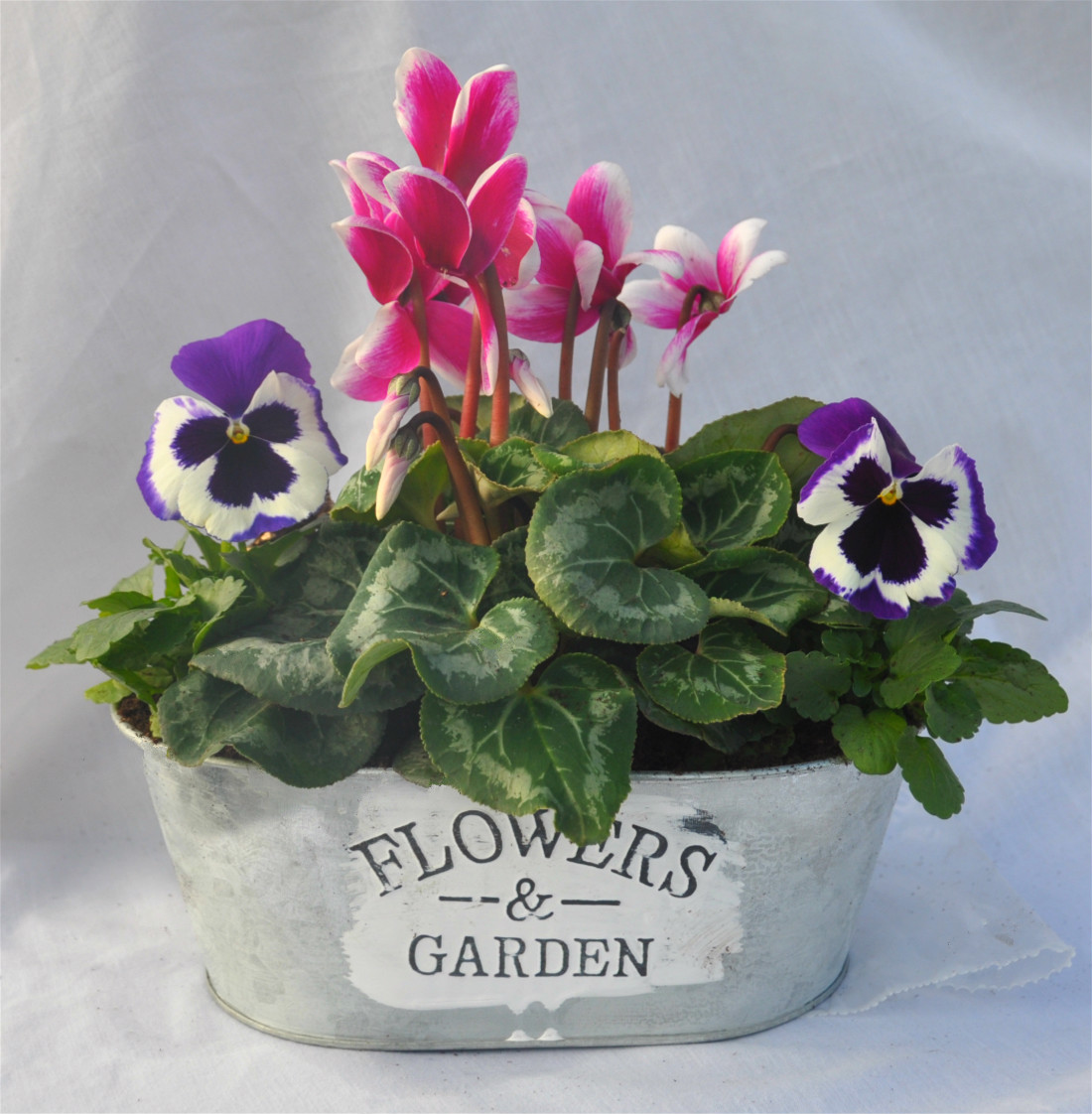 flowers and garden planter