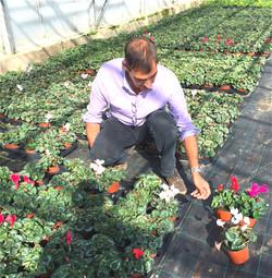 John Jackson inspecting his plants