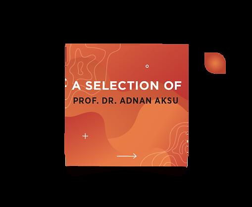 adnanaksu-07-07.png
