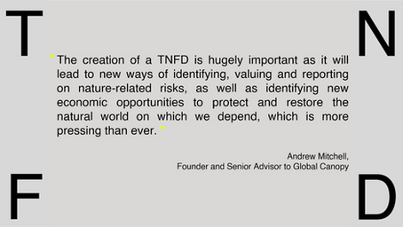 EcoAdvisors excited to be among member organisations that make up new TNFD Informal Working Group