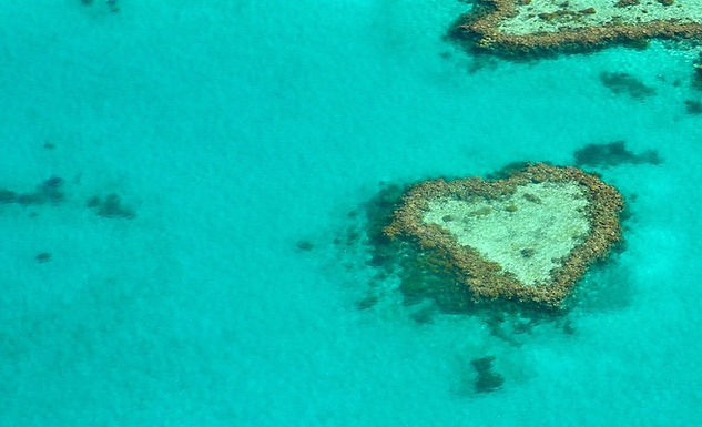 coral reef heart-1492445_1920 cropped -