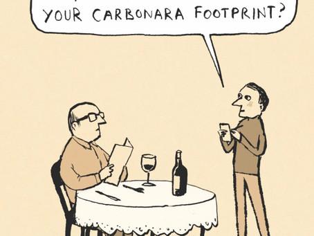 Do Carbon Offset Trading Schemes Work?