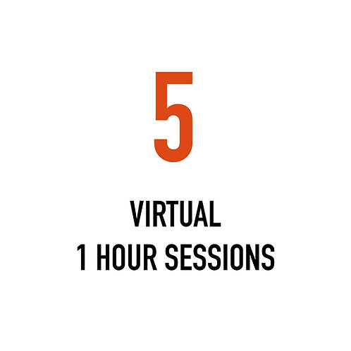 Five VIRTUAL 1 Hour Sessions