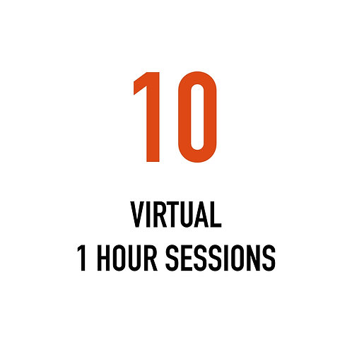 Ten VIRTUAL 1 Hour Sessions