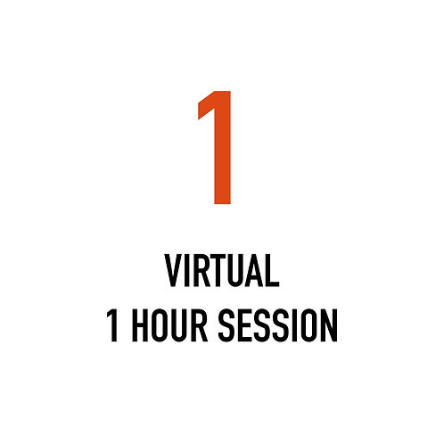 One VIRTUAL 1 Hour Session
