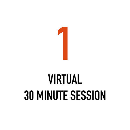 One VIRTUAL 30 Minute Session