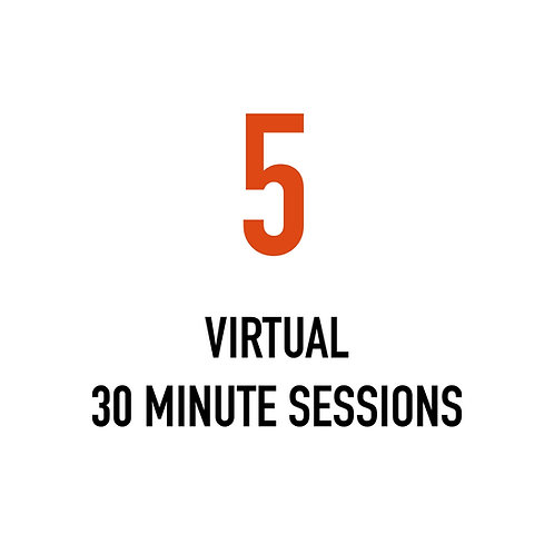 Five VIRTUAL 30 Minute Sessions