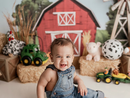 Caden's Barnyard First Birthday Cake Smash Session - With Jaemie Hillbish Photography.