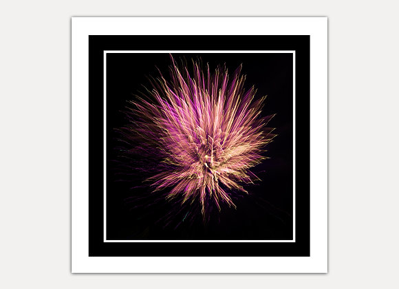 Firework Blast (COMES IN 3 COLOURS)