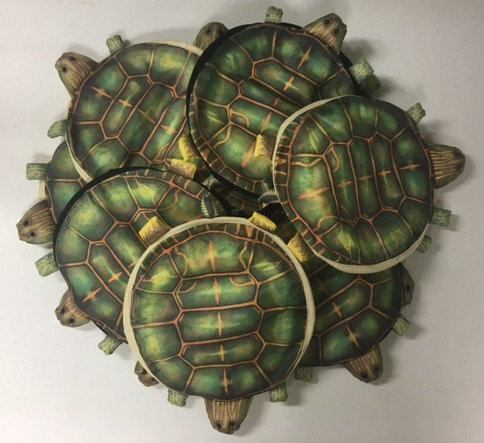 Bale of Turtle Hats (25)