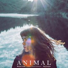 ANIMAL A3.jpg