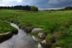 Ruisseau en Margeride