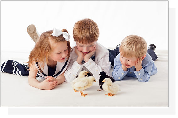 children photos with baby chicks