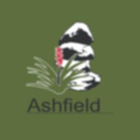 ashfield public school logo.001.jpeg