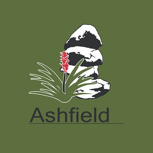 ashfield public school logo.001.jpeg