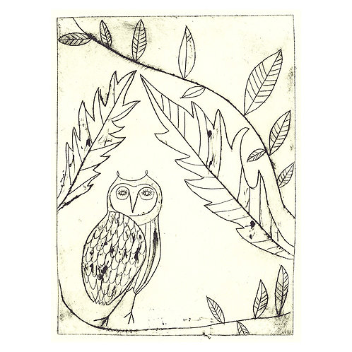 William's Owl