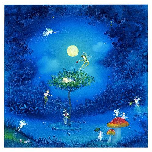 Midsummer night dream