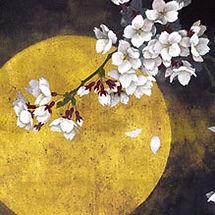 artistTop_29iinakyomi.jpg