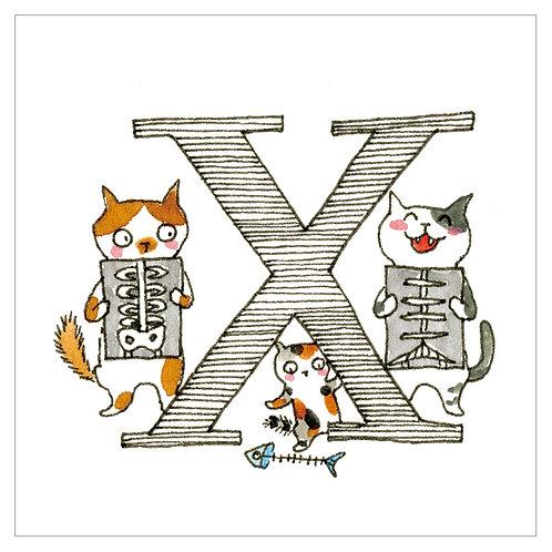 MAI TAKEWAKI's Alphabet series : X