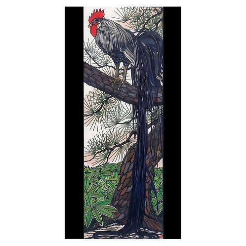 Picture Postcard - Picture of a long-tailed rooster -