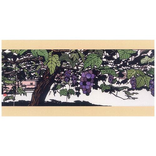 Picture Postcard - Grape field -
