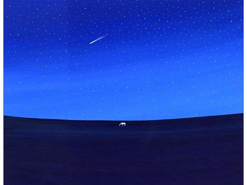 A falling star