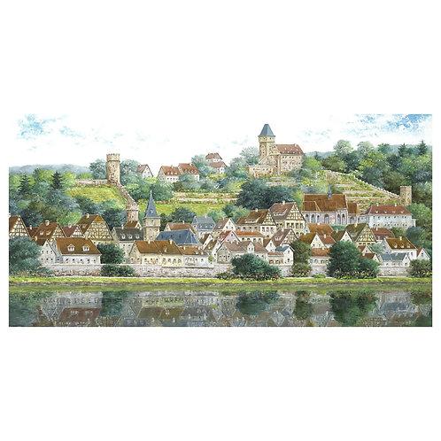 The old city on the banks of the Neckar (Hirschhorn)
