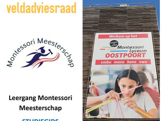 Montessori Meesterschap voor het VO