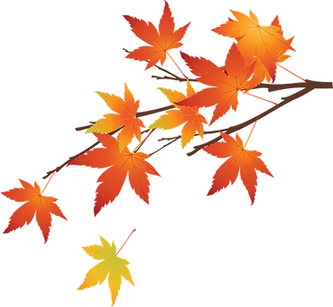 kisspng-maple-leaf-autumn-hand-made-autu