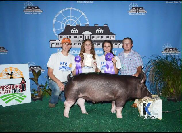 Champion Berkshire Barrow